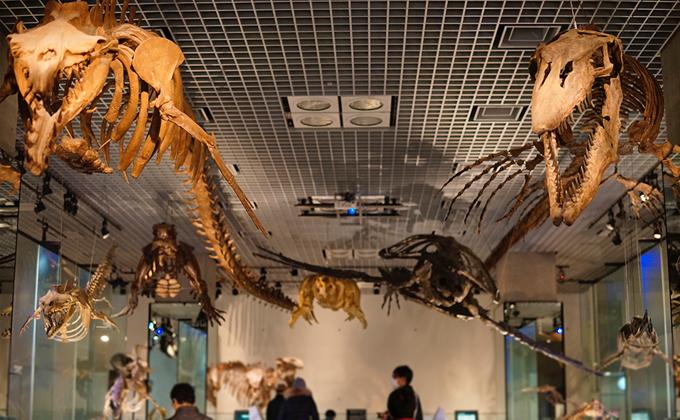 博物館 上野 科学