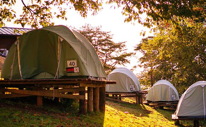 パディントン ベア キャンプグラウンド 常設テント