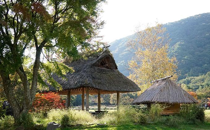 富士西湖周辺の観光地
